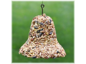 real bird feeder